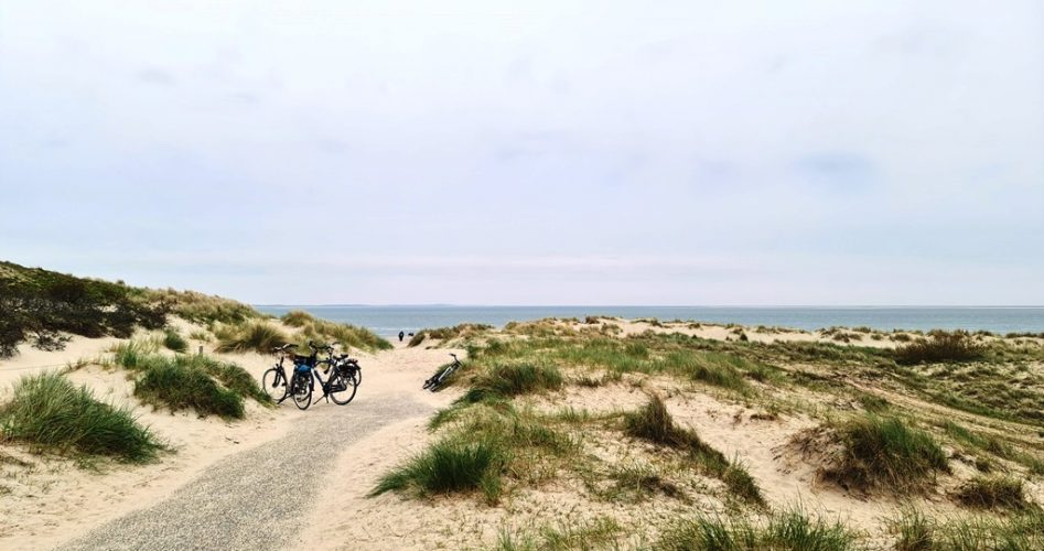 Duinen in Texel